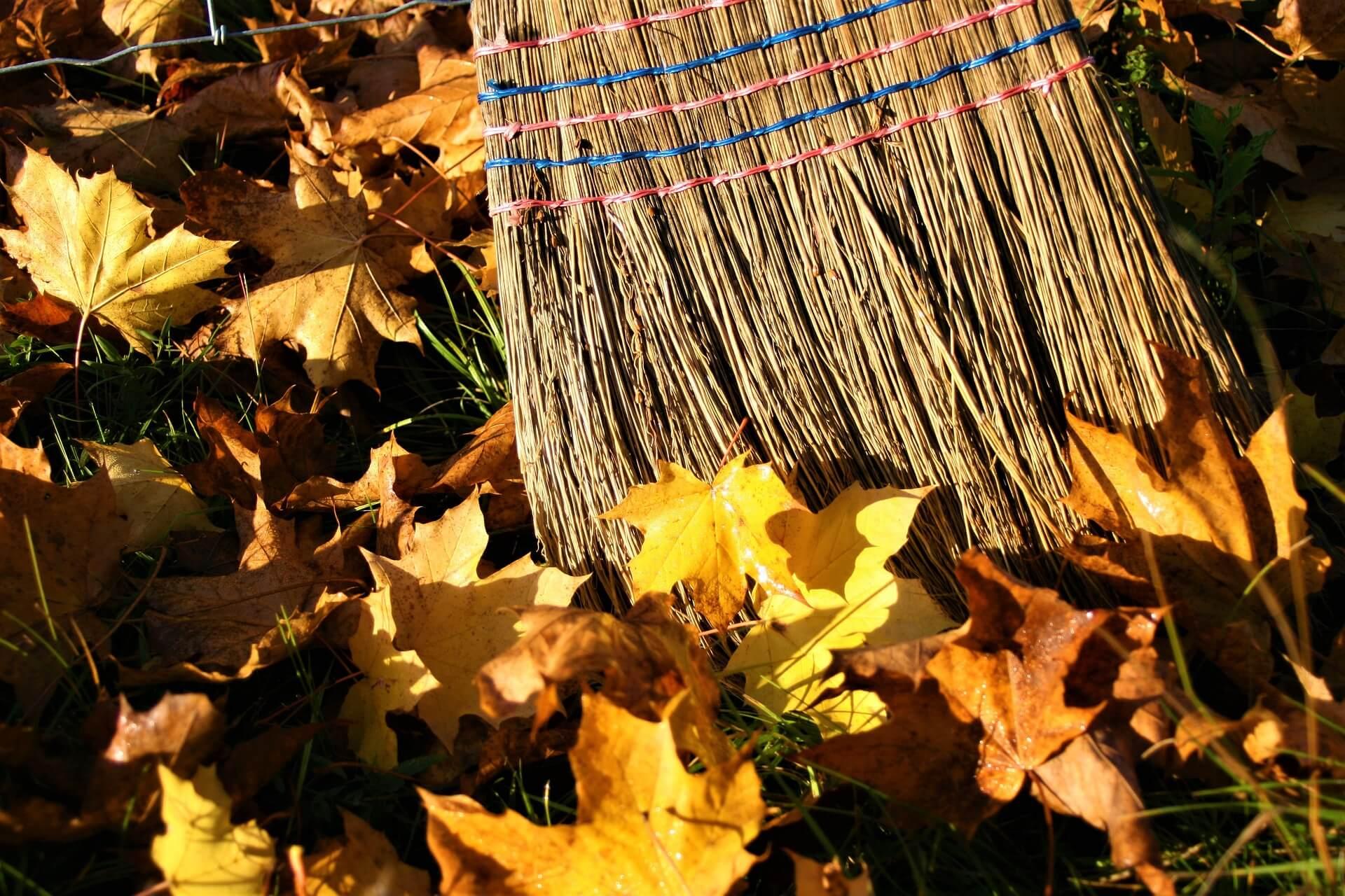 L'automne arrivée, se préparer pour l'hiver.